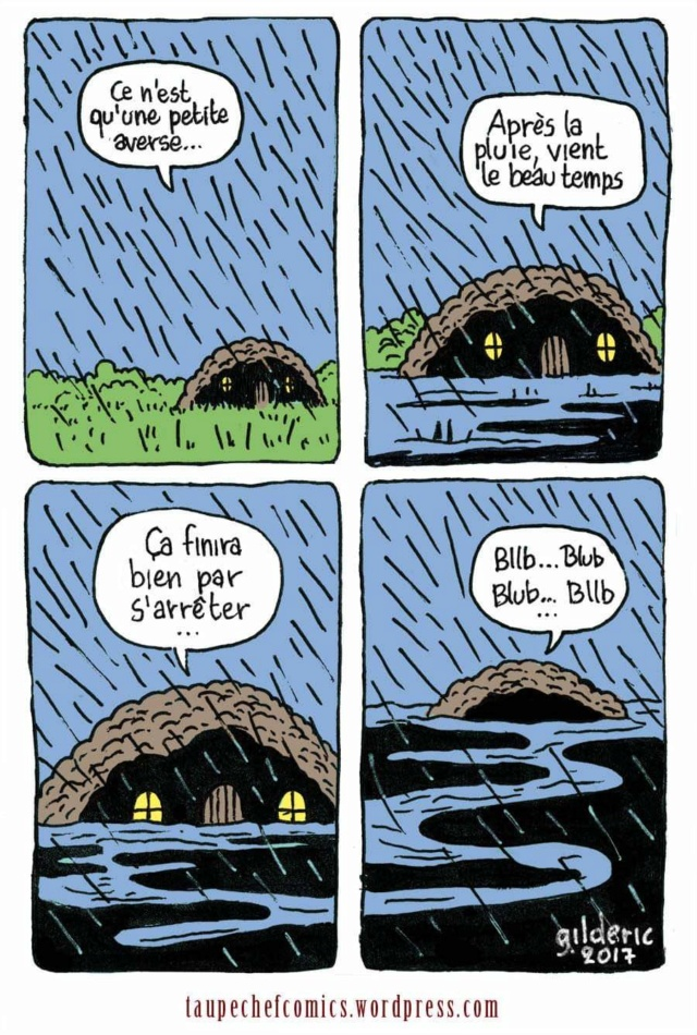 Image du jour  - Page 27 Fb_im278