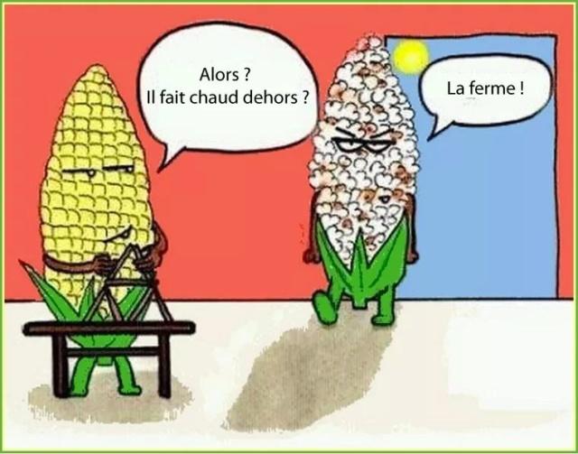 Image du jour  - Page 27 Fb_im286