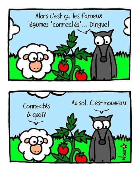 Image du jour  - Page 28 Fb_im301