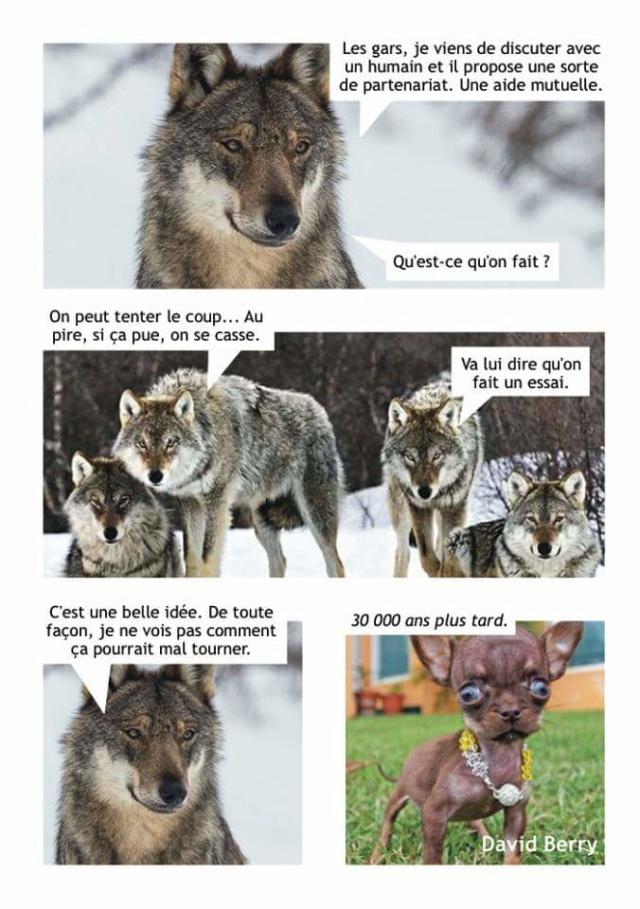 Image du jour  - Page 7 Fb_img96