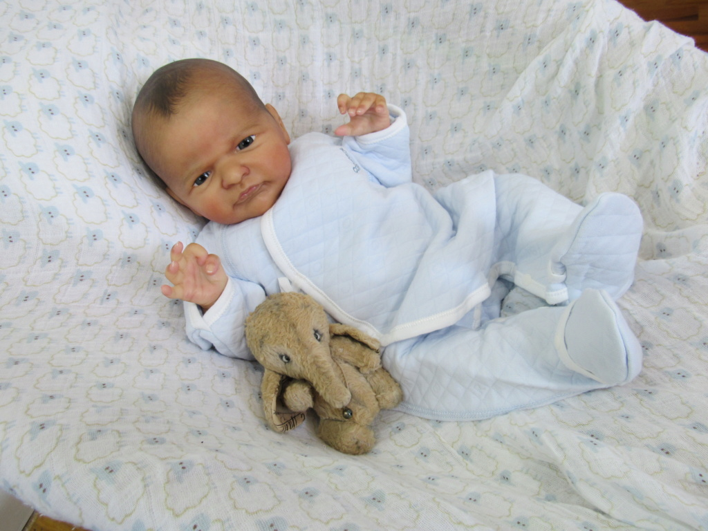 Newest Baby Alfie by Laura Lee Eagles 92fa6b10