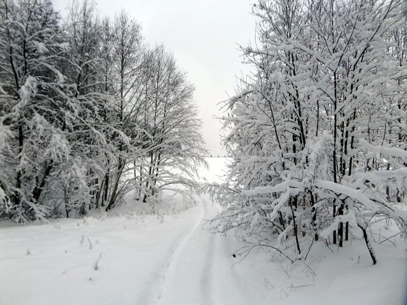 SNOW PICTURES........SHOW US YOUR VITARA! 110