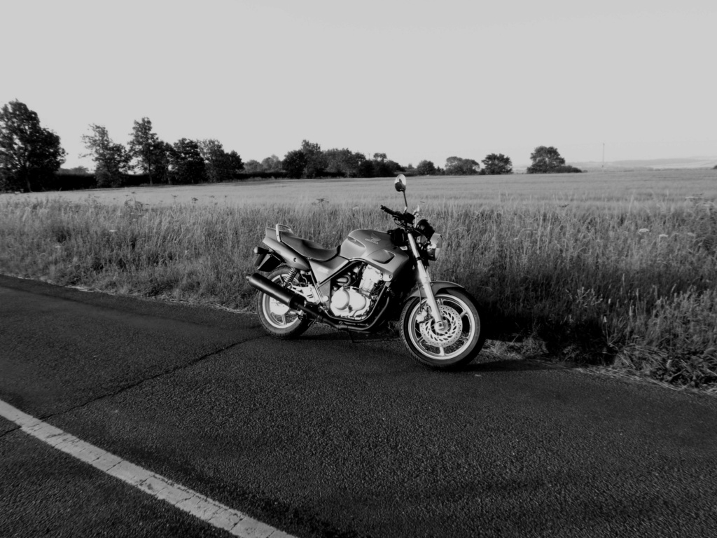 Post a photo of your bike! - Page 6 Wp11