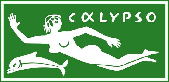 [REVELL] CALYPSO 1/125ème Réf H575 Calips10