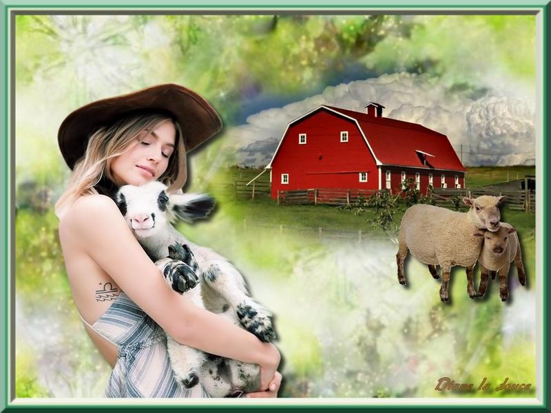 Défi du 1er SEPTEMBRE/ Femme & chèvre Tricot18