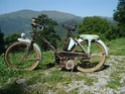 un riva sport moteur mosquito  Riva_s10