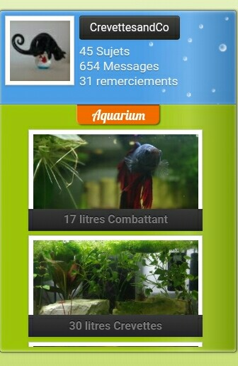 Mettre des images dans le profil d'un membre  Screen14