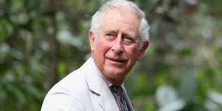 Prince Charles tests positive for COVID-19, Buckingham Palace says Downlo10