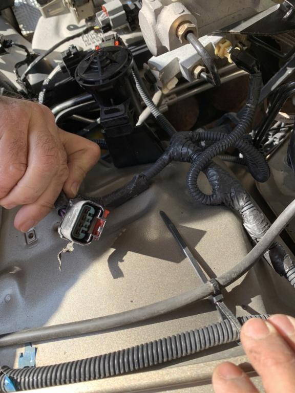 Connettore vano motore  772b3110