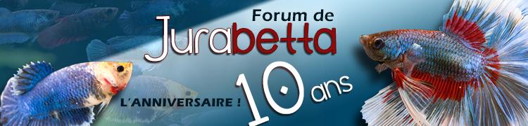 Le forum a 15 ans 64473210