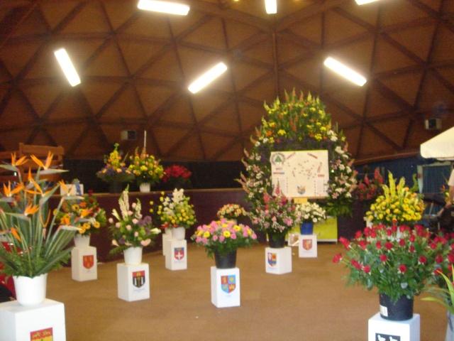 Exposition florale Avril 2007 à Savigny Dsc02110
