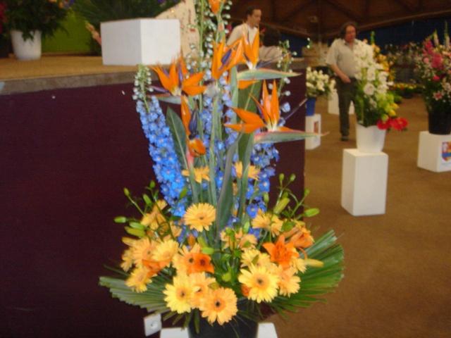 Exposition florale Avril 2007 à Savigny Dsc02114