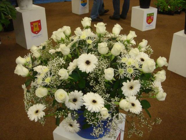 Exposition florale Avril 2007 à Savigny Dsc02120