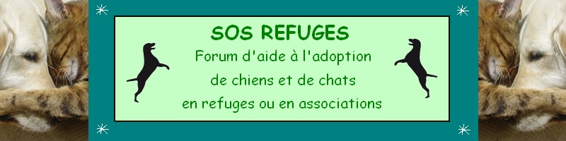 SOS Refuges
