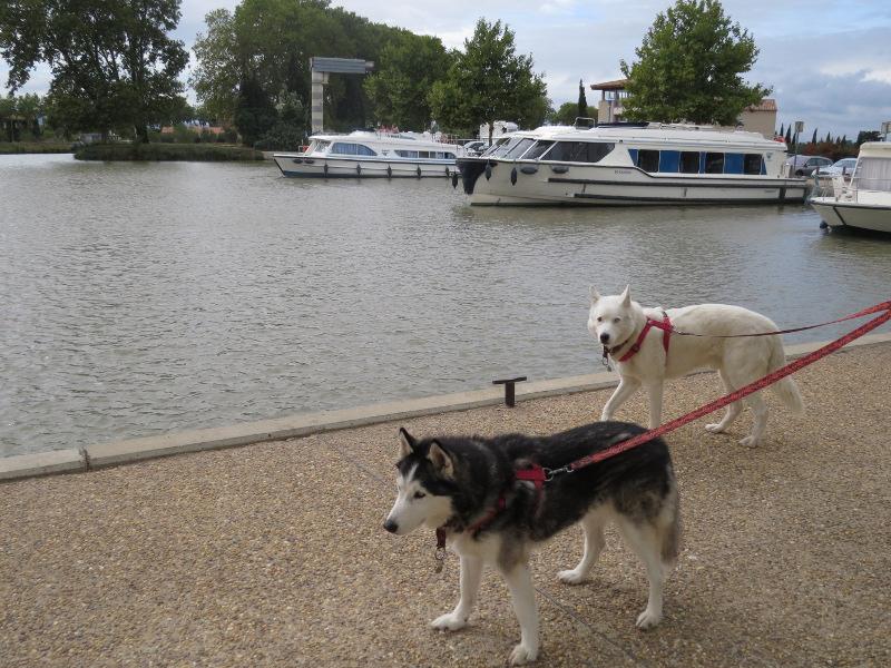 Chadka et Yocco en vacances dans le Sud 31_cha10