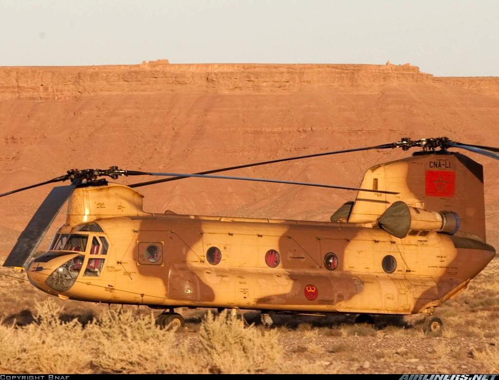 صور الجيش المغربي جديدة نوعا ما  - صفحة 48 Clipbo31