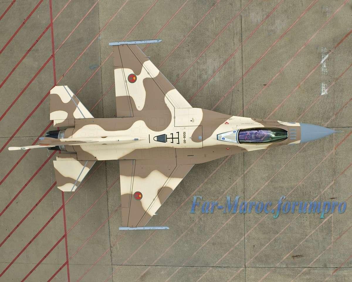 ‼المغرب يتسلّم أولى طائرات إف 16 في غشت المقبل‼ - صفحة 2 2010_f11