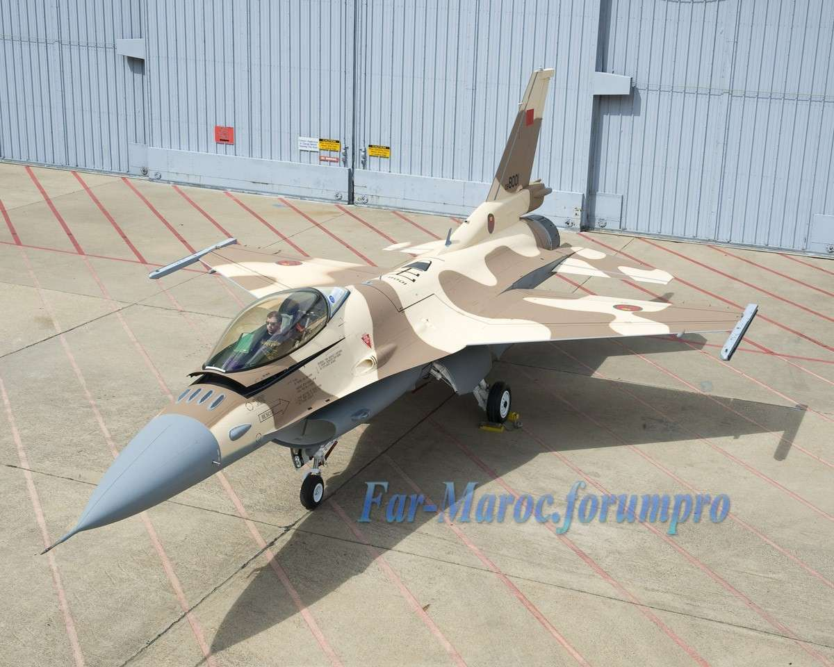 Photos RMAF F-16 C/D Block 52+ - Page 13 2010_m10