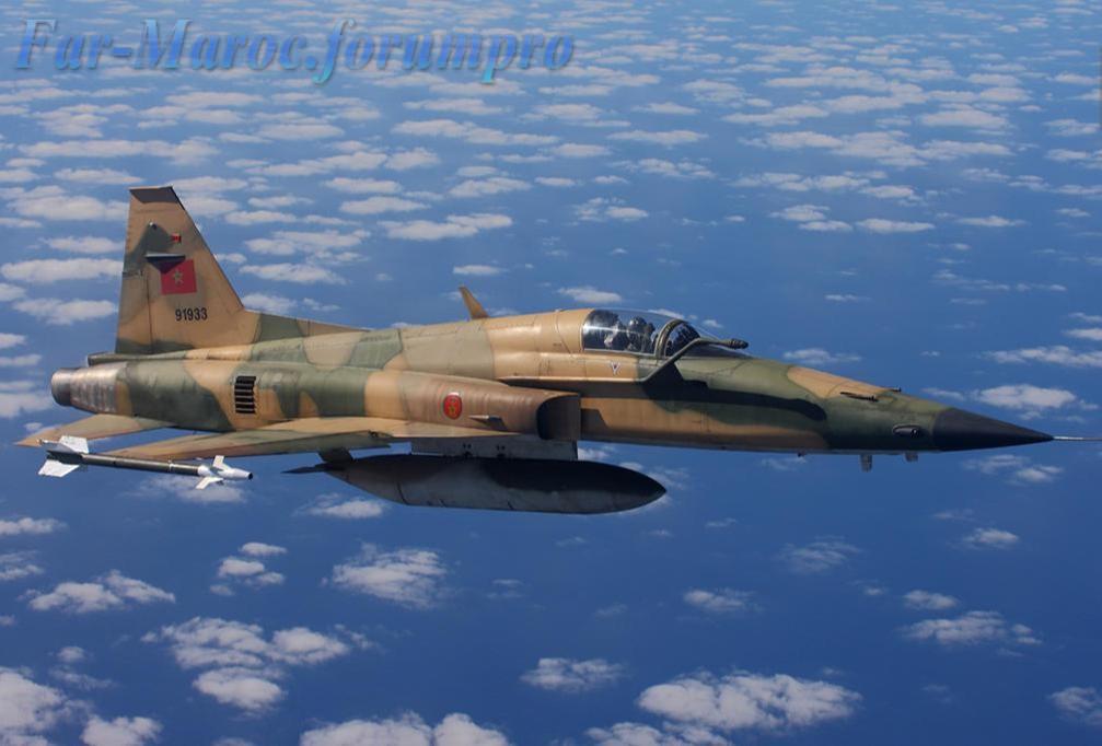 Missiles (Air-Air / Air-Sol / Air-Mer) roquettes et bombes en dotation. - Page 8 91933211