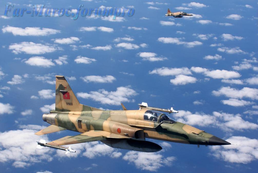 Missiles (Air-Air / Air-Sol / Air-Mer) roquettes et bombes en dotation. - Page 9 91933_10
