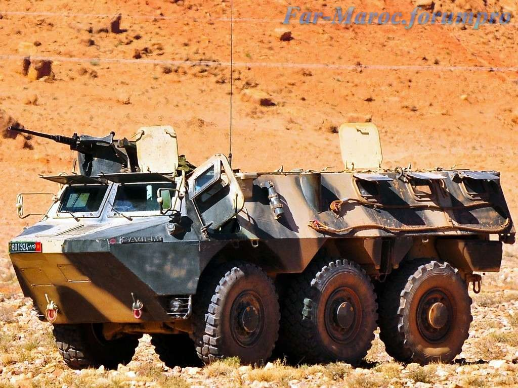 Photos - Véhicules blindées / Armored Vehicles, APC and IFV - Page 2 Clipbo14