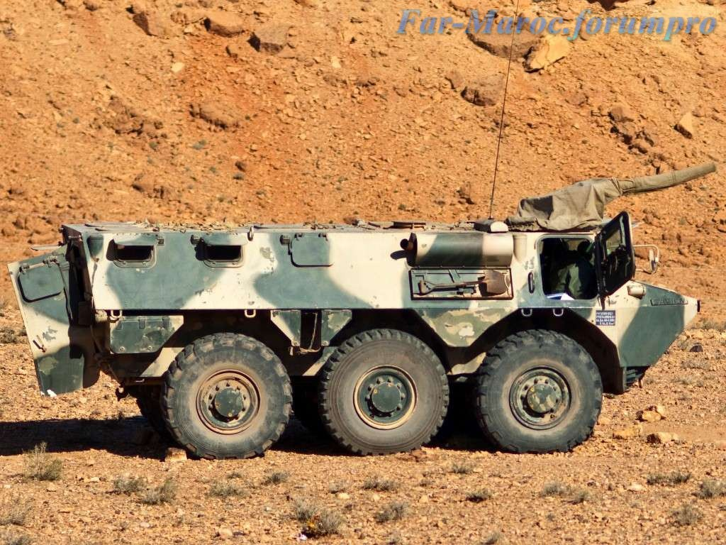 Photos - Véhicules blindées / Armored Vehicles, APC and IFV - Page 2 Clipbo15