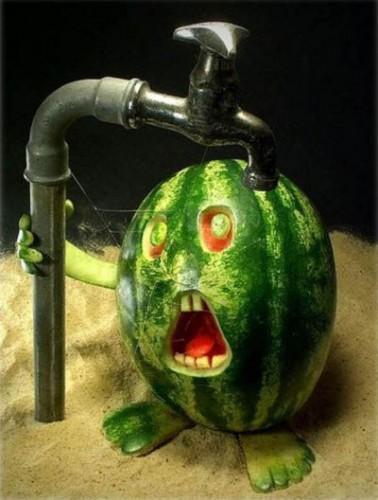 Images fruits et légumes en délires  20557910