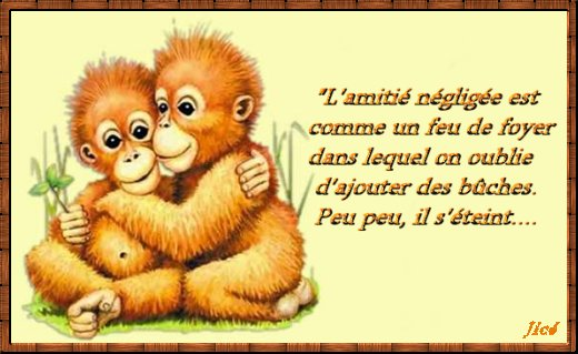 Proverbes en images Amour - Page 15 Dyn00710