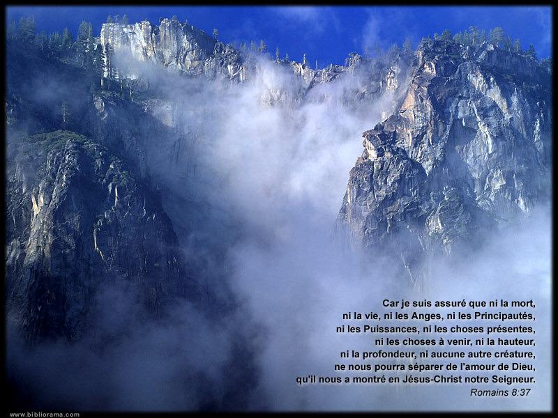 Proverbes en images Amour - Page 3 Montag10