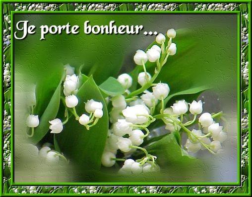 Des bouquets de muguets  Muguet11