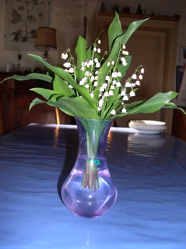 Des bouquets de muguets  Muguet12