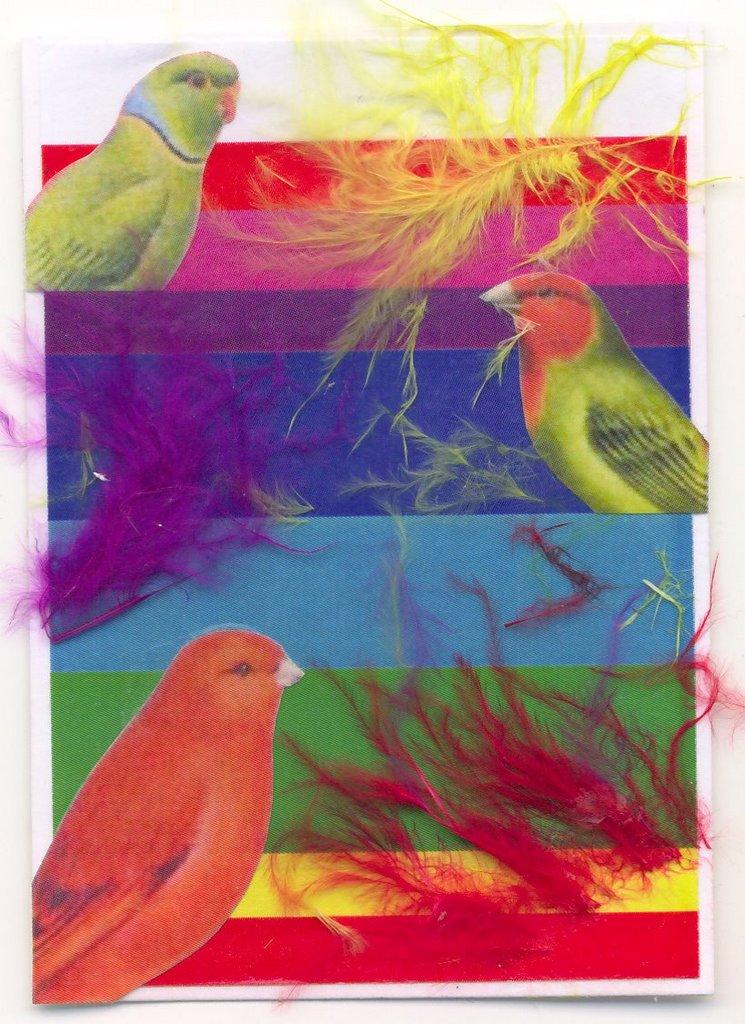 Jeu du multicolore - Page 2 Multic10