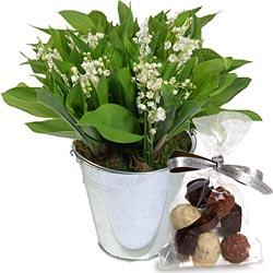 Des bouquets de muguets  Zinc_m10