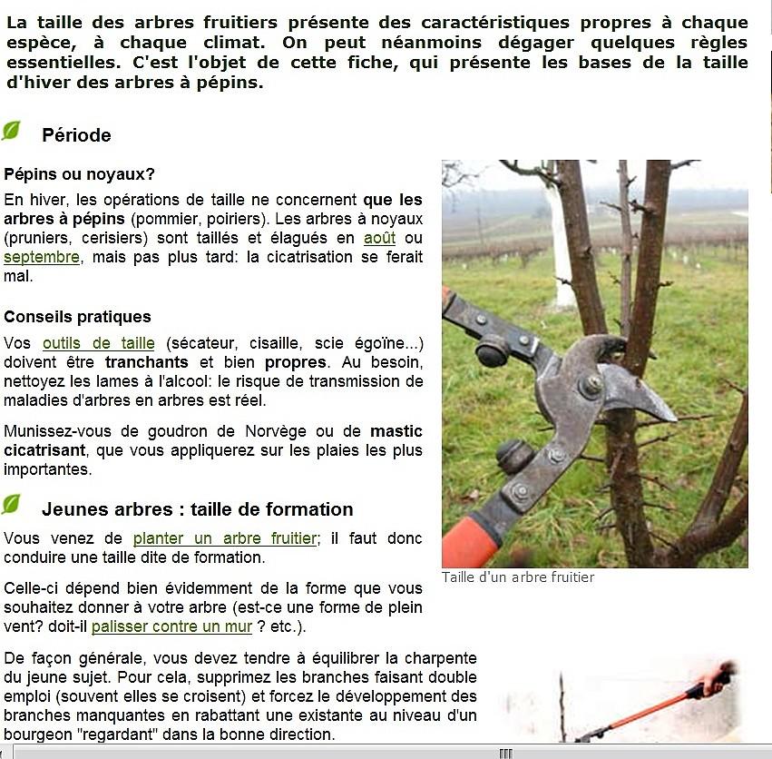2011: La bio-diversité dans mon jardin.... oiseaux, mouotns, nénuphars. - Page 3 Sans_167