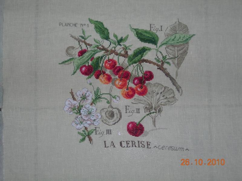 La galerie de TARAINE - Page 2 Cerise17