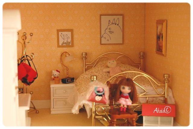 Le Manoir (dollhouse 1/12ème pour ma puki²) Dsc_8113
