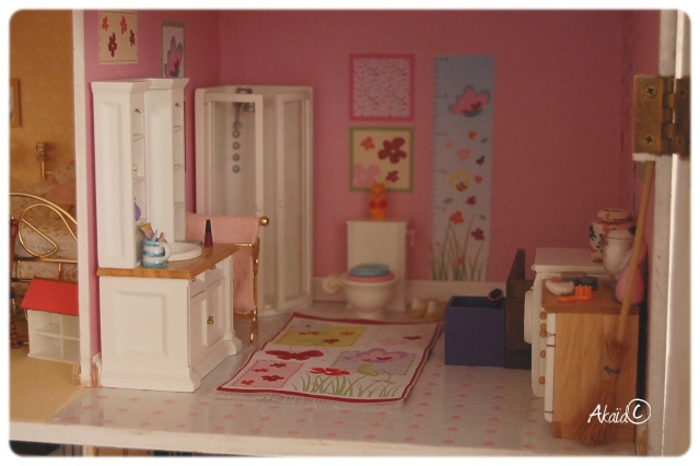 Le Manoir (dollhouse 1/12ème pour ma puki²) Dsc_8115