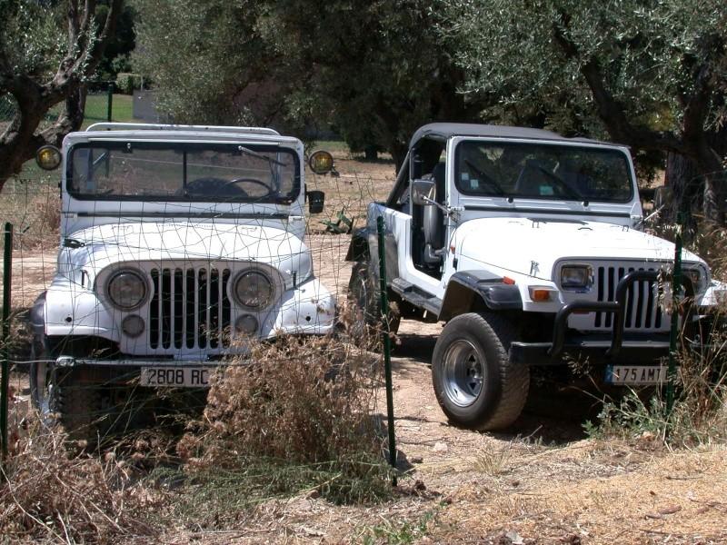 carburant pour moteur essence 4 cyl de 1971  jeep CJ5 +huile Mes_2_10