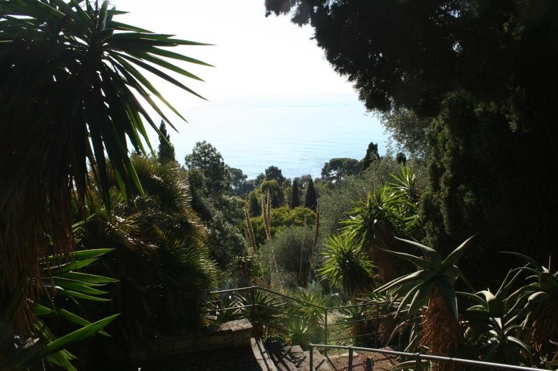 (Italie) Giardini Botanici Hanbury - Mortola Ambian12