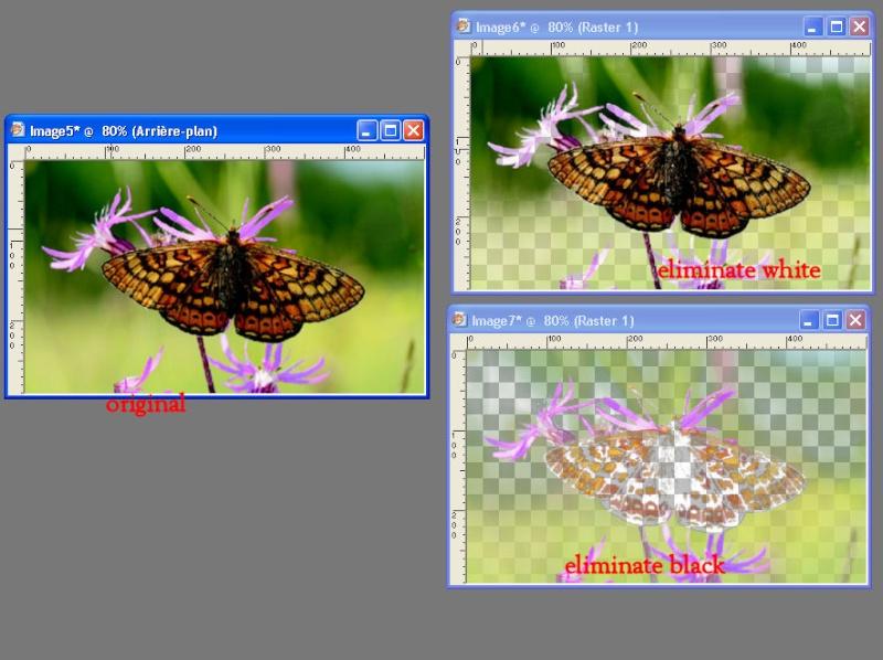 modèles d'effet des filtres Ef_tra13