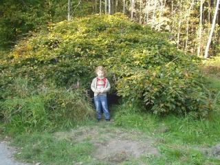 Forêt Pa070016
