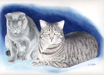 Artiste peintre 2_chat10