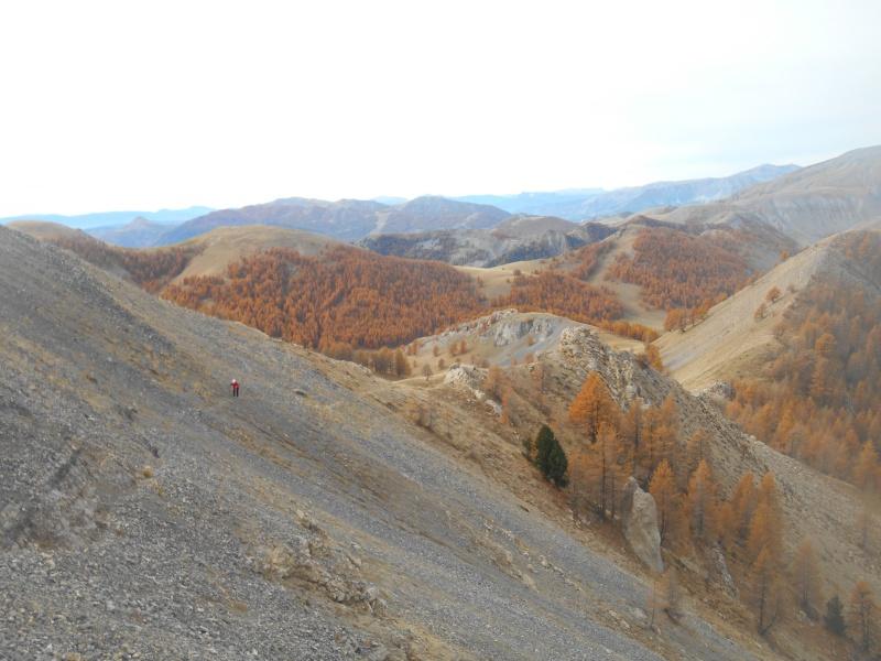 au Mt Des Graviers Graviy16