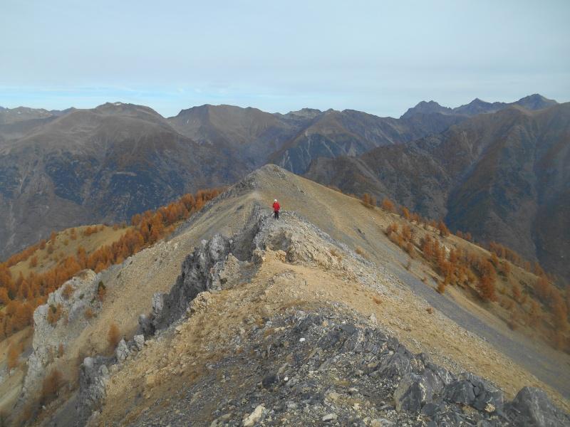 au Mt Des Graviers Graviy17
