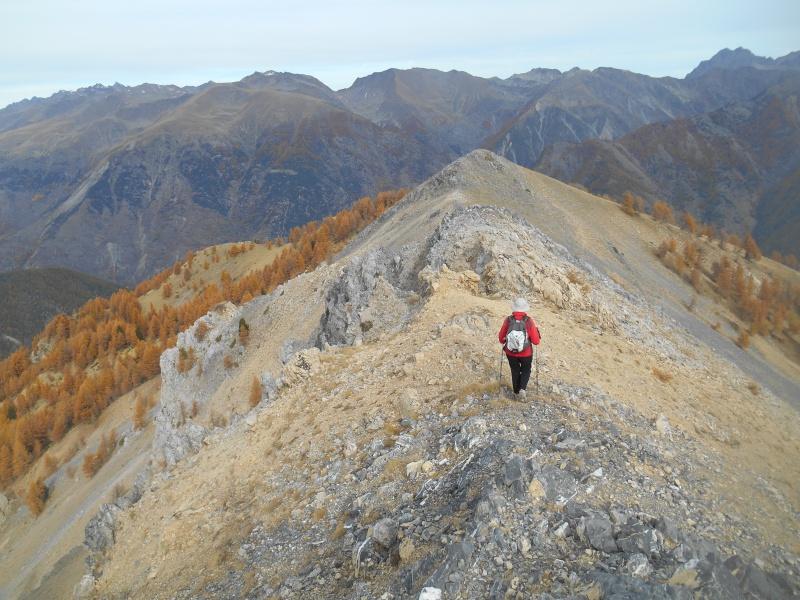 au Mt Des Graviers Graviy20