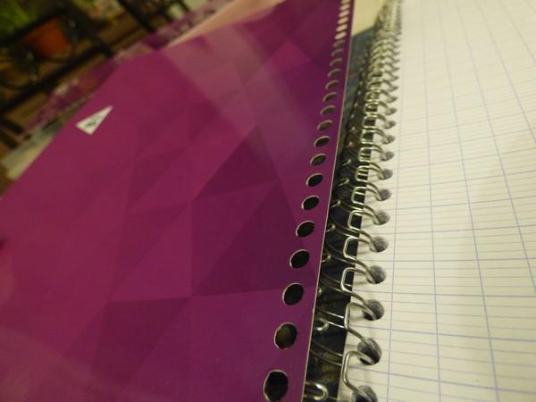Un cahier pour la rentrée... P1010617