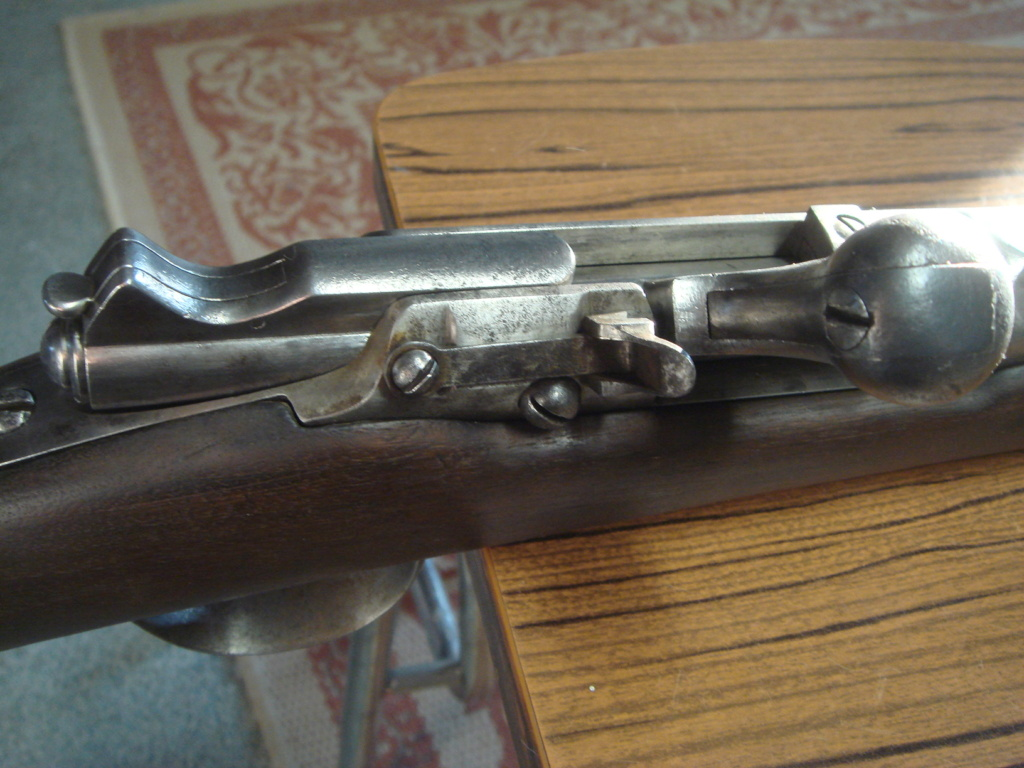 """Fusil Chassepot modifié """"Beaumont"""" (?) Dsc03622"""