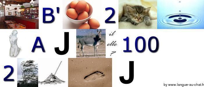 Lent gueux dais oies zoos Image10