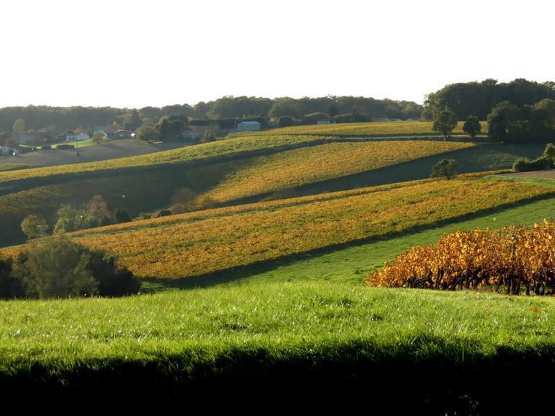 l'automne et ses couleurs  sont là Img_0811