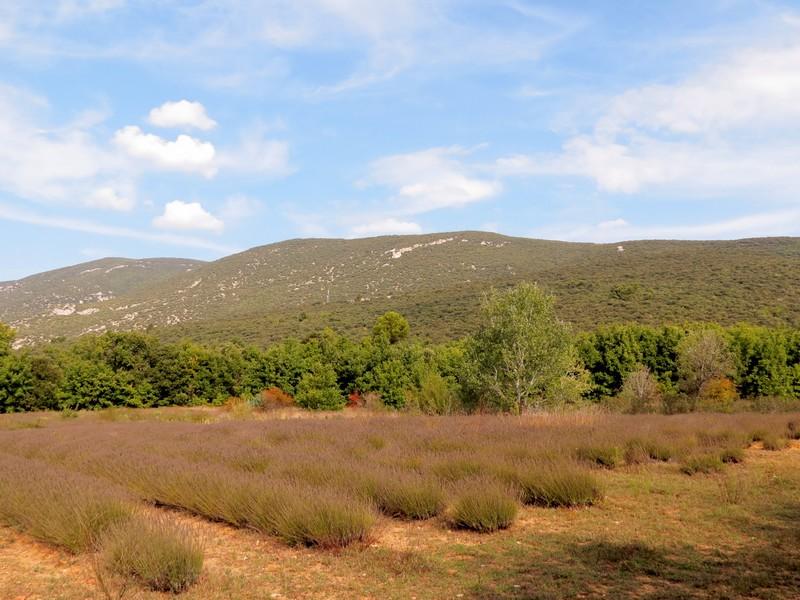 les ocres de rustrel , le colorado provençal Img_6611